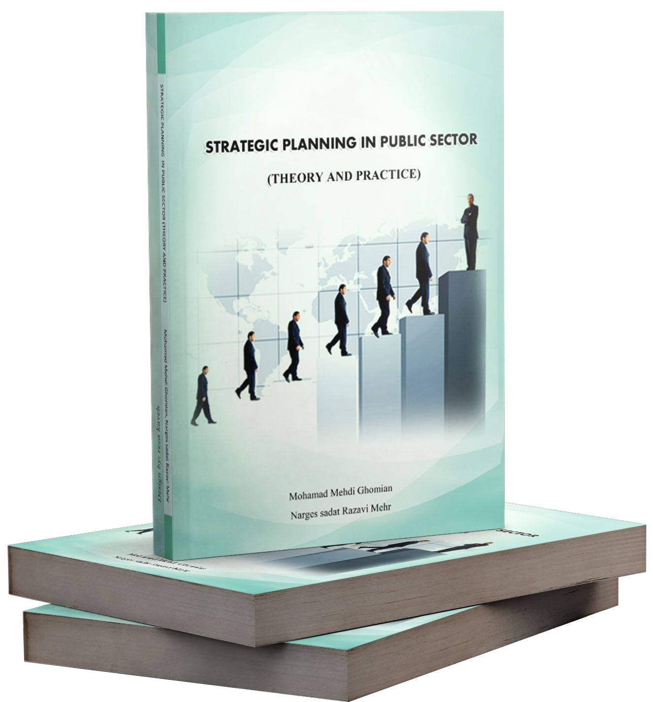 strategic planing in public sector